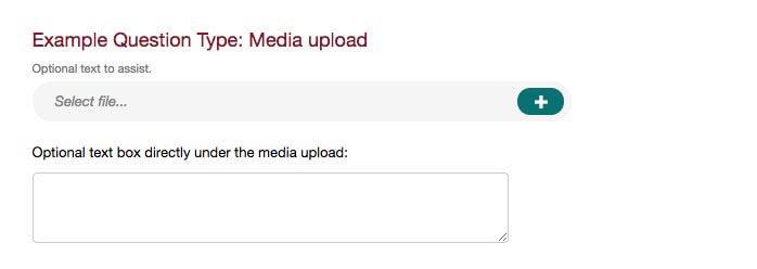survey question type media upload