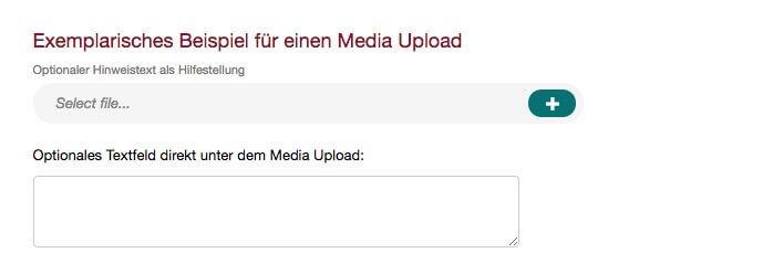 Exemplarische Media Upload Umfrage