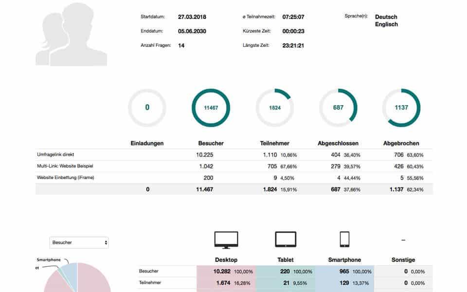 Teilnahmestatistik der Umfrage im Bereich Auswertung